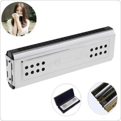 Professional 24 Holes Key Of C&G Silver Double-side Tremolo Harmonica for Adult Beginner and Children