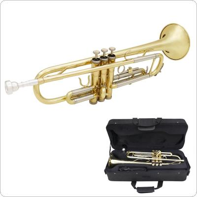 Gold & Silver Two-tone Trumpet Bb Flat Brass Gold-painted with Storage Case Cleaning Brush Gloves